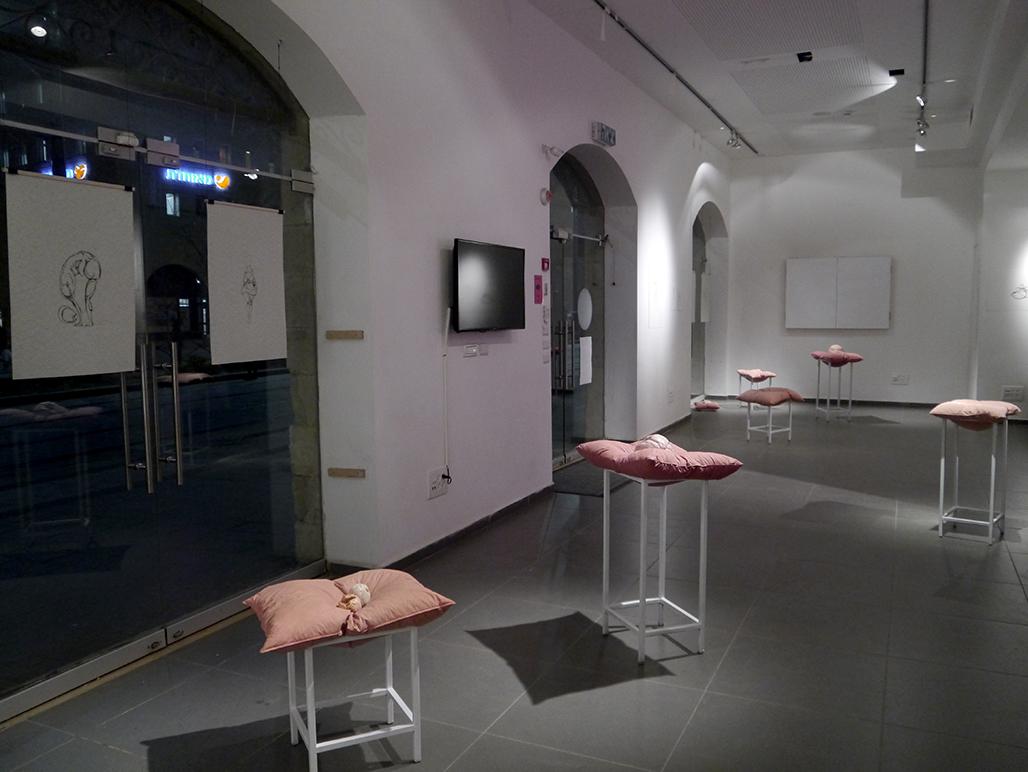 ברק טויטו ורעות טרוים -הרבה בשר הרבה אוויר-מרחב - התערוכה